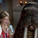 Skittles Ad, 'Walrus'