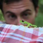 Follow the Frog, Rainforest Alliance